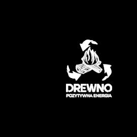 logo-drewno-na-www